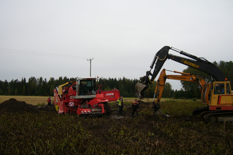 Maatilakuulumisia