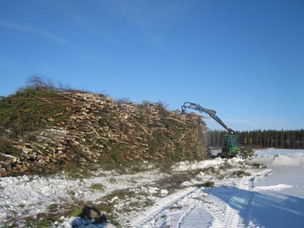 Maaliskuussa energiapuut ajettiin kasaan, josta ne vietiin rekalla lämpölaitokselle.